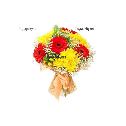 Send bouquet of yellow chrysanthemums to Sofia