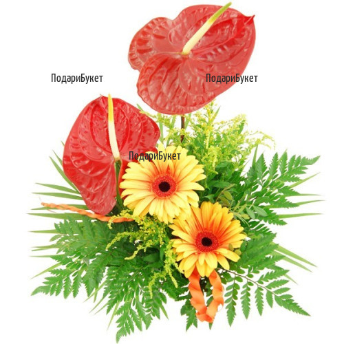 Send exotic bouquet of gerberas and anthuriums