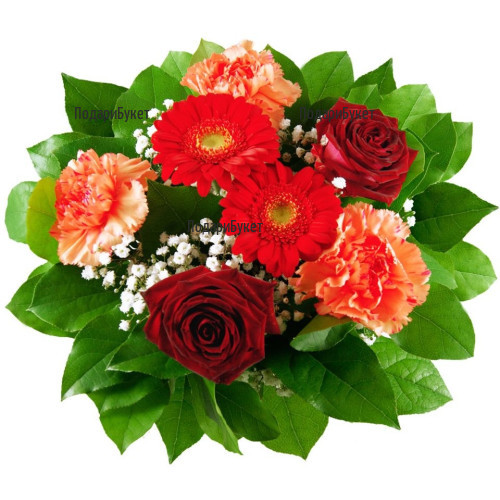 Send bouquet of carnations and roses to Sofia, Plovdiv, Varna, Burgas