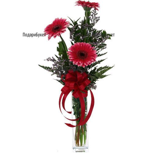 Send stylish bouquet of gerberas to Sofia, Plovdiv, Varna, Burgas