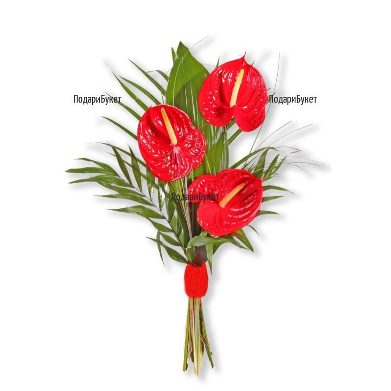 Поръчка на цветя и букети от антуриуми в София, Пловдив, Варна, Бургас