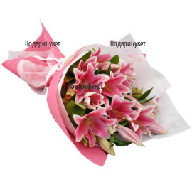 Send flowers and bouquets of lilie to Sofia, Plovdiv, Varna, Burgas