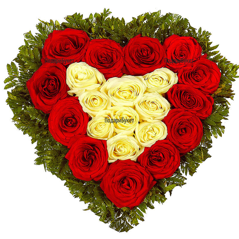 Send heart of red and white ecuadorian roses to Sofia, Plovdiv