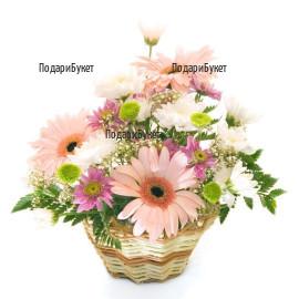 Send flower basket to Ruse, Haskovo, Pleven
