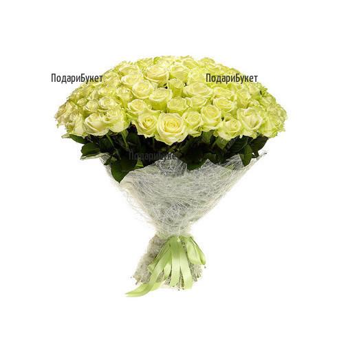 Send 101 white roses to Sofia, Plovdiv, Varna.