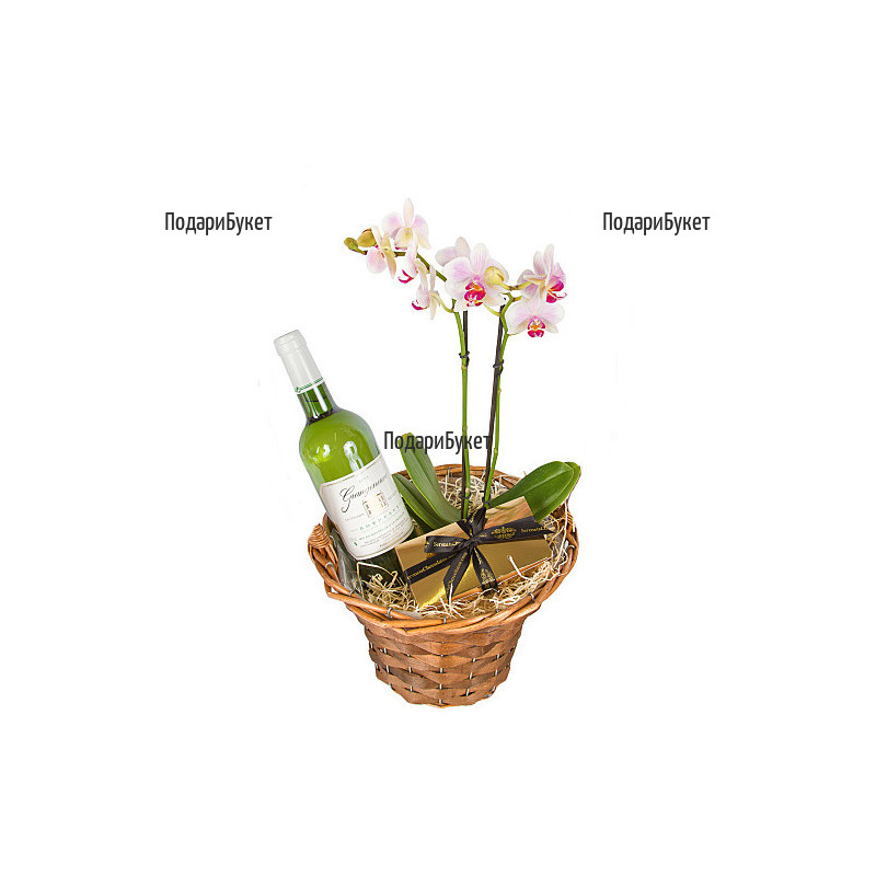 Send basket with orchid, wine and chocolates to Sofia by courier.