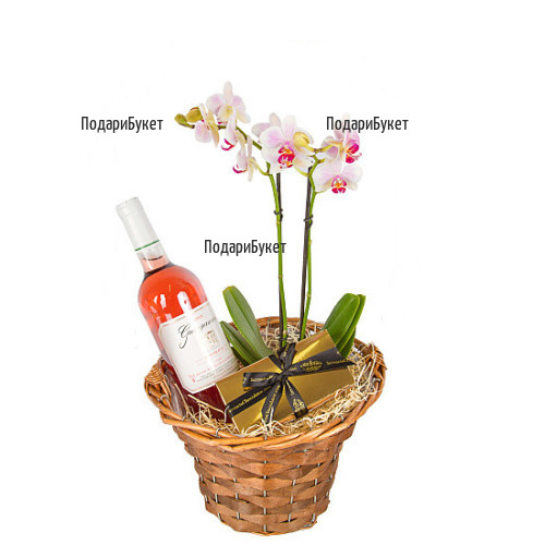 Send basket with orchid and gifts to Sofia