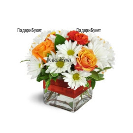 Send arrangement  of roses and chrysanthemums to Sofia, Plovdiv, Varna