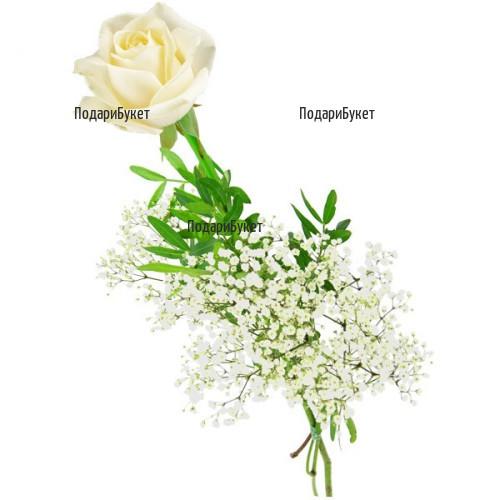Send one white rose to Sofia, Plovdiv, Varna, Burgas