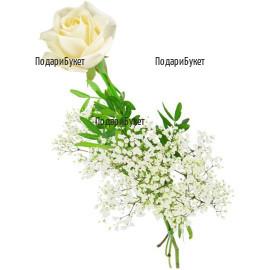 Доставка на една бяла роза в София, Пловдив, Варна, Бургас