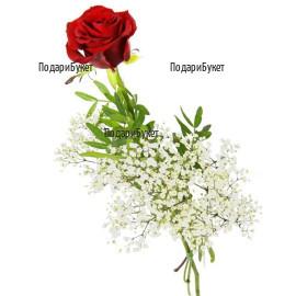 Поръчка и доставка на една червена роза