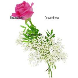 Доставка на една розова роза в София, Пловдив, Варна, Бургас