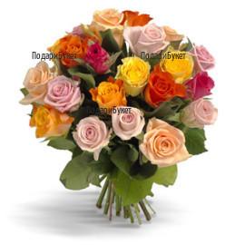 Send bouquet of multicoloured roses to Sofia, Plovdiv, Varna, Burgas